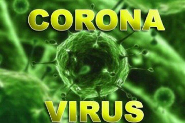 جهش مبتلایان به ویروس کرونا در ترکیه