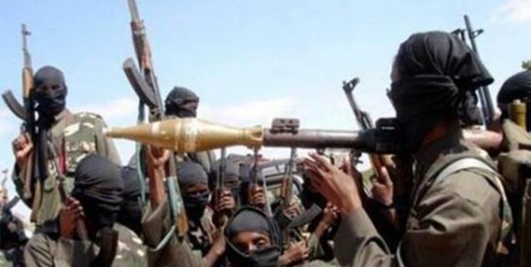 چاد پاکسازی این کشور از بوکو حرام را گفت
