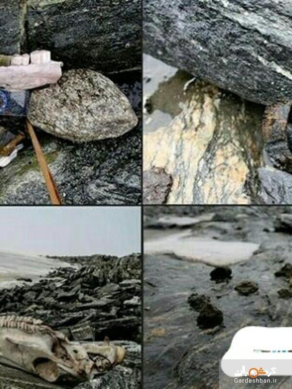 گرم شدن آب و هوا در نروژ یک جاده باستانی را آشکار کرد، عکس
