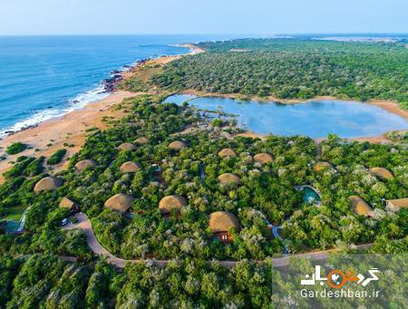 پارک ملی یالا، مکانی برای دیدن حیات وحش در سریلانکا، تصاویر