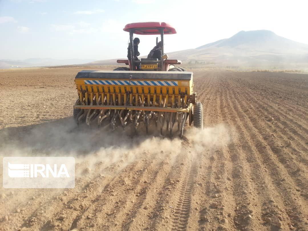خبرنگاران 24 هزار هکتار از مزارع گیلانغرب به کشت گندم اختصاص یافت